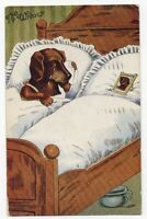 032520 VINTAGE COMIC POSTCARD DOG CRYING IN BED W/ SPOUSE PICTURE THE WIDOW 1911