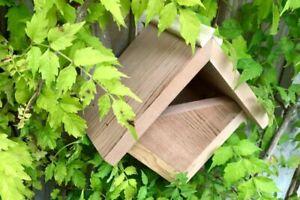 Robin Box | Cedar Bird House Garden Nest Small Wooden Hanging Robins Nesting UK