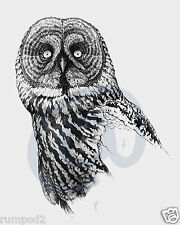 Owls/Owl Poster/Great Grey Owl/16x20 inch/Illustration Black and White