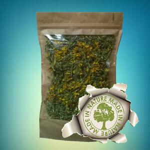 St John's Wort Organic Dried Herbal Tea 100 % Natural Premium Quality