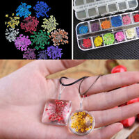 24Pcs 12 Colors Dried Dry Flower for 3D UV Gel Acrylic False Tips Nail Art Craft