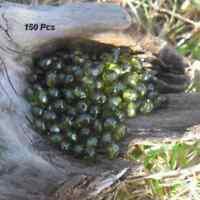 150 Perles de bohème facette 5 mm Tchèque coloris Olive
