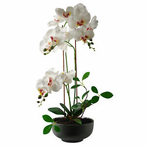 65cm Artificial Orchid White in Glazed Planter LEAF-7364