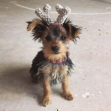 The Reindeer Deer hat, snood for your dog. XSmall Chihuahua, Yorkie. Costume