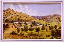 THE HOLY LAND GARDEN OF GETHSEMENE JERUSALEM W/COL ENG SCHOOL C1850