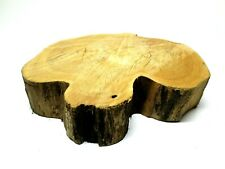 Black Locust Live Edge Round Turning Blank Twin Heart Dry Large Burl 17x15x4