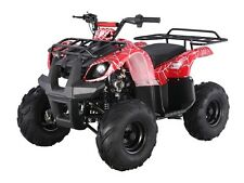 New listing New bigger 2017 Utility Atv 125cc with Reverse