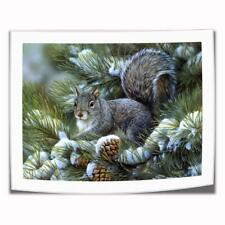 "8""x10""Squirrel Pine Tree HD Canvas prints Painting Home Decor Picture Wall art"