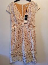 BNWT🌹Next🌹Size 10 Women's Ivory Lace Mix Floral Dress Beige Lining New