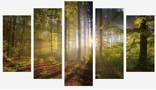 Alberi Foresta-TRAMONTO nel bosco PAESAGGIO caldo 5 PANNELLO diviso in tela foto