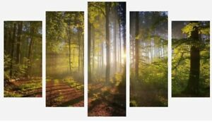 Forest Trees - Sunset In The Woods Warm Landscape 5 Split Panel Canvas Pictures
