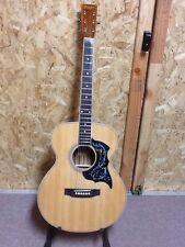 Limited Edition Cozart Custom Made Acoustic Guitar Hummingbird Pick guard