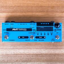 AMT Electronics PANGAEA CP-100FX-IR Convolution Player(CAB.Sim/Effect processor)