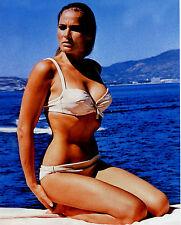 Ursula Andress Leggy 8x10 photo #U2187