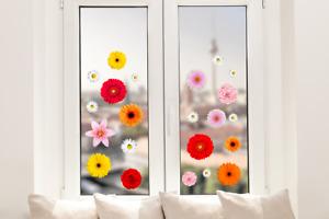 Hochwertige Fenstersticker Blumen Blüten Frühling Blumenblüten Gerbera Rose