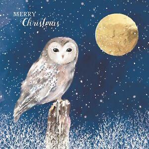 CHARITY Christmas Cards   Festive Owl Snow Scene   Countryside Xmas Cards Pk 10