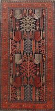 Pre-1900 Antique Heriz Bakhshayesh Area Rug Geometric Vegetable Dye Tribal 5x10