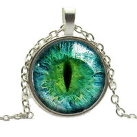 Special Dragon Cat Eye Glass Cabochon Pendant on Bronze Necklace Chain wc