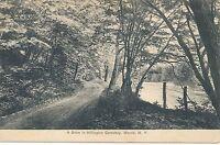 MORRIS NY – Hillington Cemetery Drive - 1911