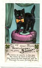 VINTAGE SON'S BIRTHDAY GREETING postcard:  LUCKY BLACK CAT