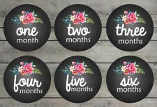 Floral Baby Girl Print Baby Month Stickers Baby Milestone Stickers Photo