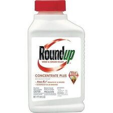 Roundup Weed and Grass Killer Concentrate - 16 fl. oz.