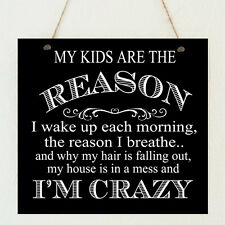"""Shabby """"Children Reason I'm Crazy"""" Funny Sign Plaque Chic Gift Mum Mother's Day"""