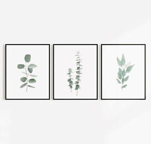 Three Leaf Eucalyptus Leaf Set Of 3 Wall Art Pictures Sign Print Botanical