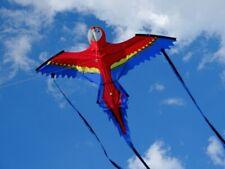 Einleiner Drachen Papagei