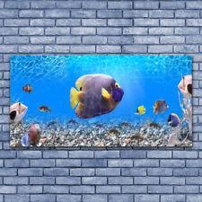 Glasbilder 100x50 Wandbild Druck auf Glas Korallenriff Unterwasser Fische Natur