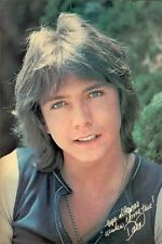 1970s David Cassidy pin-up poster replica fridge magnet - new!