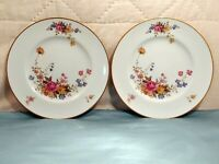 2 Vintage Noritake Ireland Scala #2761 10 3/4 inch China Dinner Plate