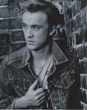 Tom Felton Harry Potter Malfoy B&W Hand Signed 8x10 Autographed Photo w/COA