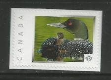 PICTURE POSTAGE   P   Dots   # 2587a  PERSONALIZED     MNH   #1