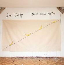 Joe Wulff : Ghost Under Water (vinyle). Wulff., New Music