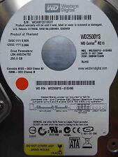250 GB Western Digital wd2500ys-01shb0/dbbhnt 2ahn/oct 2006 DISCOTECA RIGIDO