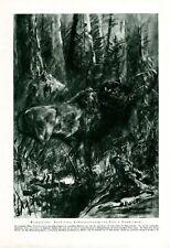 Wisent XL Kunstdruck 1926 von Carl von Dombrowski* Ullitz † Obermenzing Bison