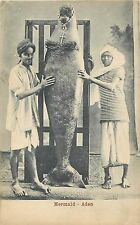 Yemen Mermaid Sirene Aden Ethnics vintage postcard