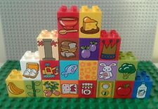 DUPLO LEGO PICTURE  BRICKS PRINTED DUPLO (Learning Aid For Toddler)