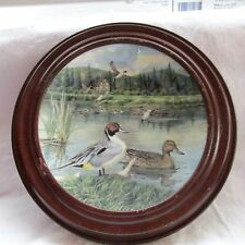 """Knowles Collector`S Porcelain Plate """" The Pintail"""" Ducks In Frame 1986"""