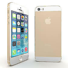 Apple iPhone 5S 16 GB Gold 6 Months Warranty