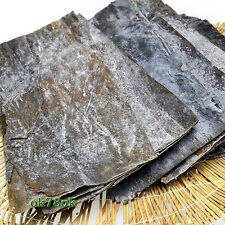 100%Pure Wild Kelp Laminaria Dried laminaria/Sea-tent herb tea 600g WHOLESALE