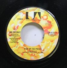 Country 45 Jim Chestnut - Pick Up The Pieces / Out Run The Sun On United Artists