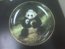 Panda Plate Last of Their Kind: The Endangered Species