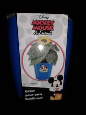 Disney Mickey Mouse & Friends Grow Your Own Sunflower Kit