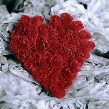 1 yardas 35cm delicado bordado Flor de Tul de Encaje De Corte De Tela Hágalo usted mismo saclloped