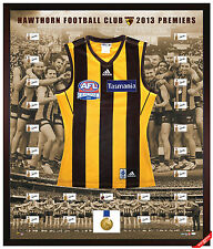 2013 HAWTHORN PREMIERSHIP TEAM SIGNED & FRAMED LIMITED EDITION AFL JUMPER