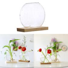 Hydroponic Plants Vase Flower Bulb Office Desktop Decorative Planter Gifts