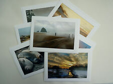 8 Variety Nature Themed Blank Note Cards w/ Envelopes 🕊�🌺Photo Greeting cards