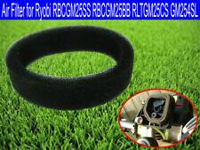 Air Filter for Ryobi RBCGM25SS RBCGM25BB RLTGM25CS GM254SL Homelite HLT25CNB/C